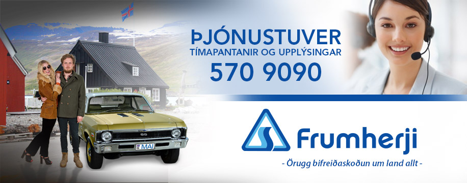 www.frumherji.is