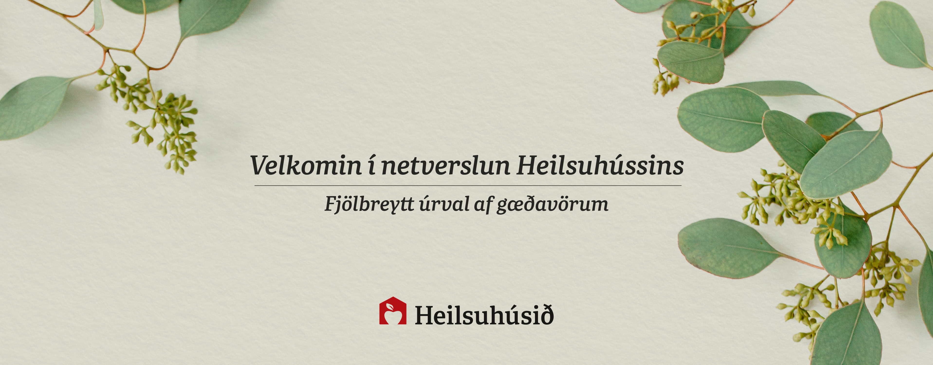 Heilsuhúsið