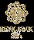 Reykjavík Spa